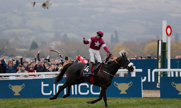 Don-Cossack-2016-Gold-Cup-Winner